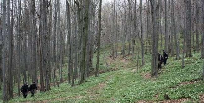 Minoră de 13 ani, găsită moartă în pădure. Cadavrul se afla într-o râpă adâncă de 35 de metri