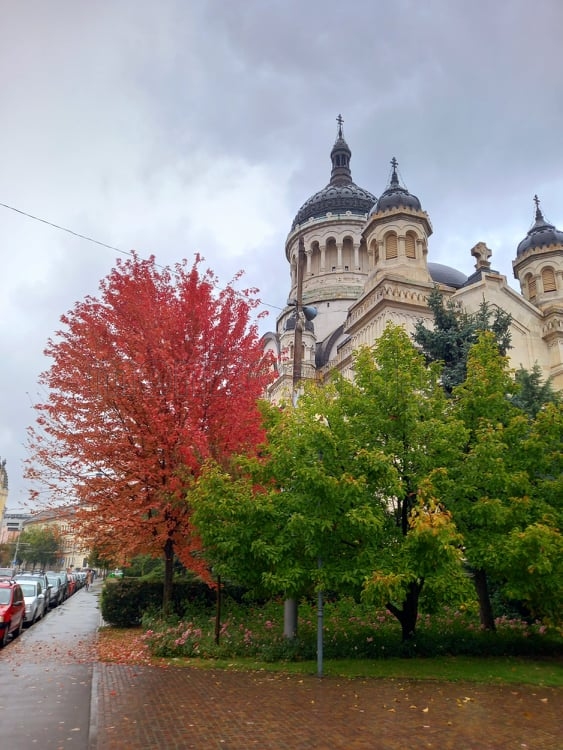FOTO. Toamna a transformat Cluj-Napoca într-o operă de artă